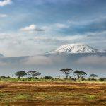 Beste reistijd Tanzania Kilimanjaro
