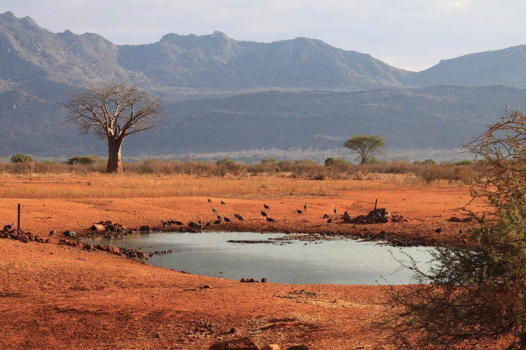 Kenia safari strand vakantie reizen Tsavo West