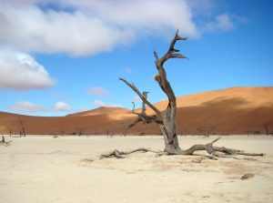 Familiereizen Namibie selfdrive
